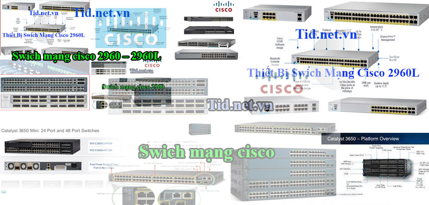 switch-cisco